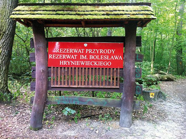 Rezerwat przyrody im. Bolesława Hryniewieckiego